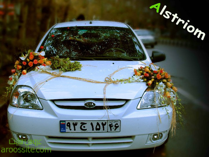 golzani mashini,model mashin aroosi,ماشین عروس 2014، گلزنی ماشین عروسی,عروس سایت